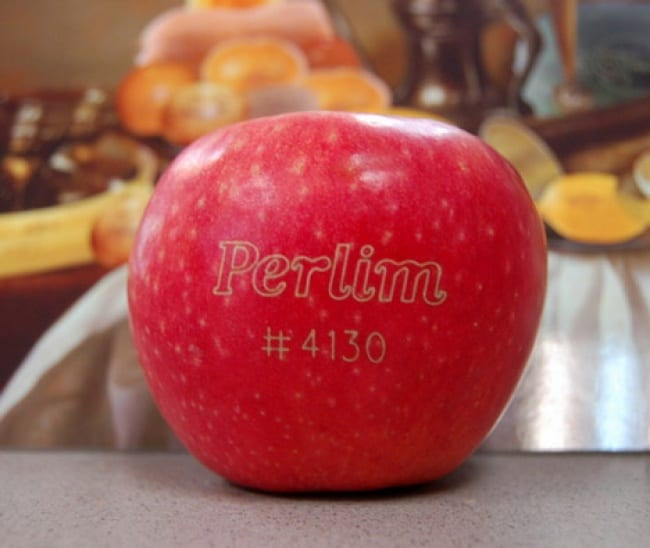 359655-R3L8T8D-650-dezeen_Laser-tattoos-to-replace-sticky-labels-on-fruit-2