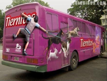 Реклама-на-транспорте_корм-для-собак
