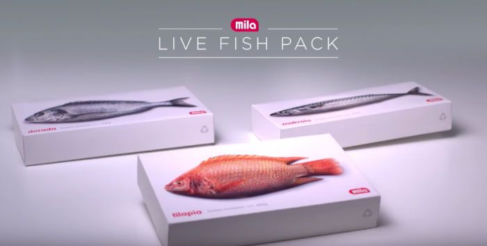 packagings-animes-poissons-5-700x354