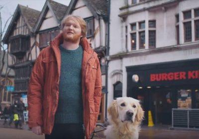 Burger King обучил собаку-поводыря находить воппер